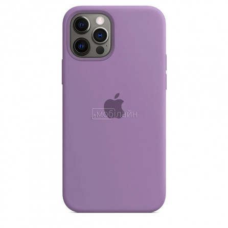 Apple iPhone 11 Pro blueberry Silicone LQ